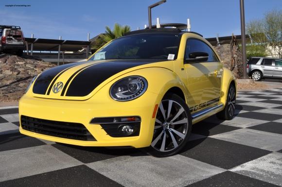 beetle 1