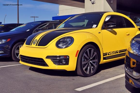 beetle 3